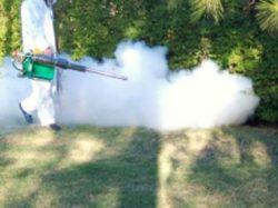 Fumigación por termoNebulización